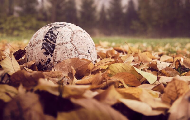 A football surrounded by fallen leaves in autumn
